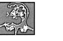 Article_box_figure-1-1400104825