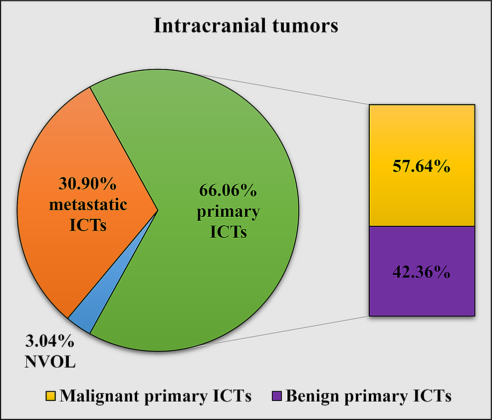 Incidence-of-histologically-confirmed-benign,-malignant,-and-primary-ICTs,-as-well-as-metastatic-ICTs-and-NVOL