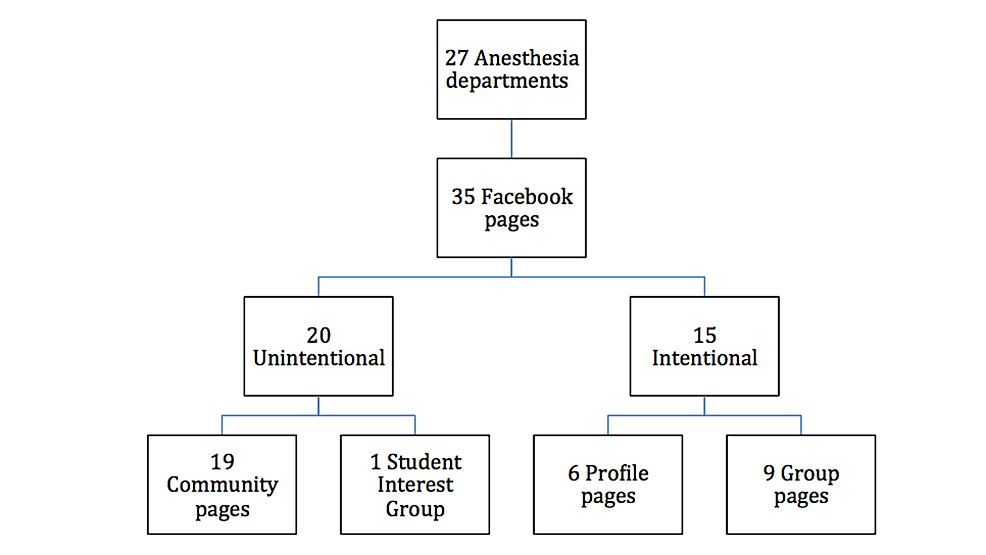 Distribution of Facebook page types.