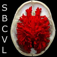 Channel logo 1562007282 logo image  sbcvl vert