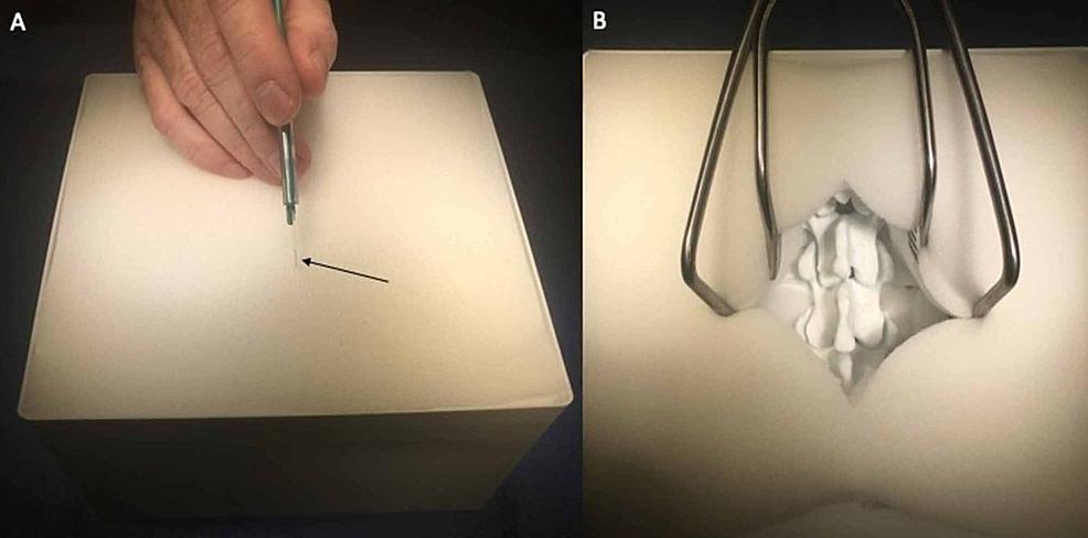 The-use-of-polyurethane-foam-for-soft-tissue-simulation