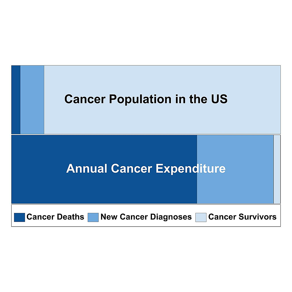 Proportions-of-the-cancer-patient-population-and-expenditures-by-group