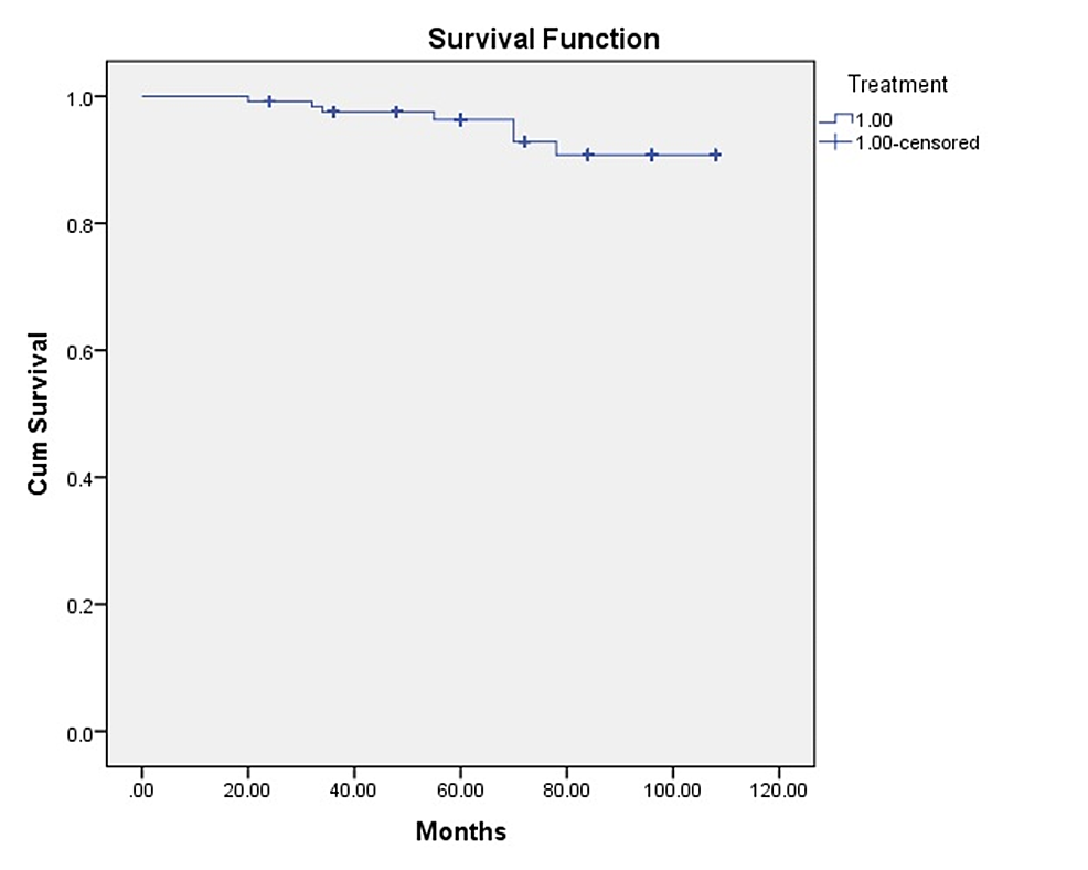 Kaplan-Meier-survival-analysis-with-time-plotted-in-months