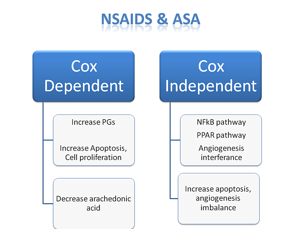 Comparison-between-COX-2-dependent-and-COX-2-independent-effects-of-NSAIDs