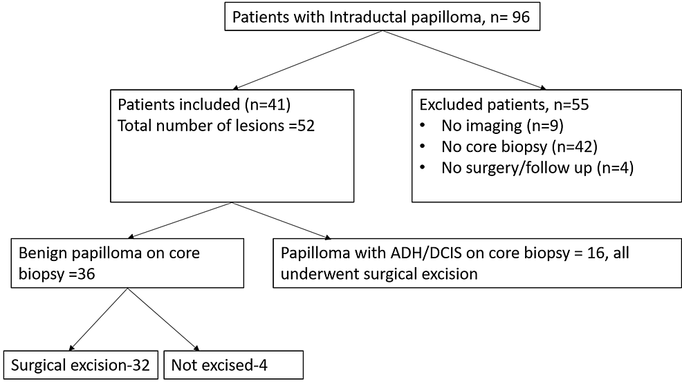 Flow-chart-showing-patients-with-intraductal-papillomas
