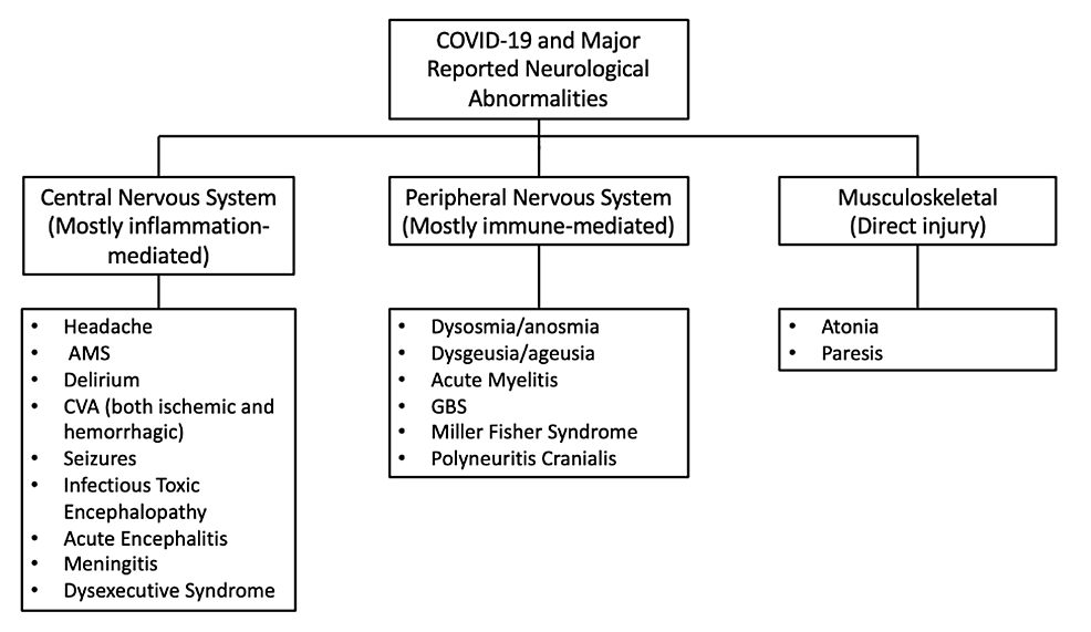 Cureus A Review Of Neurological Complications Of Covid 19