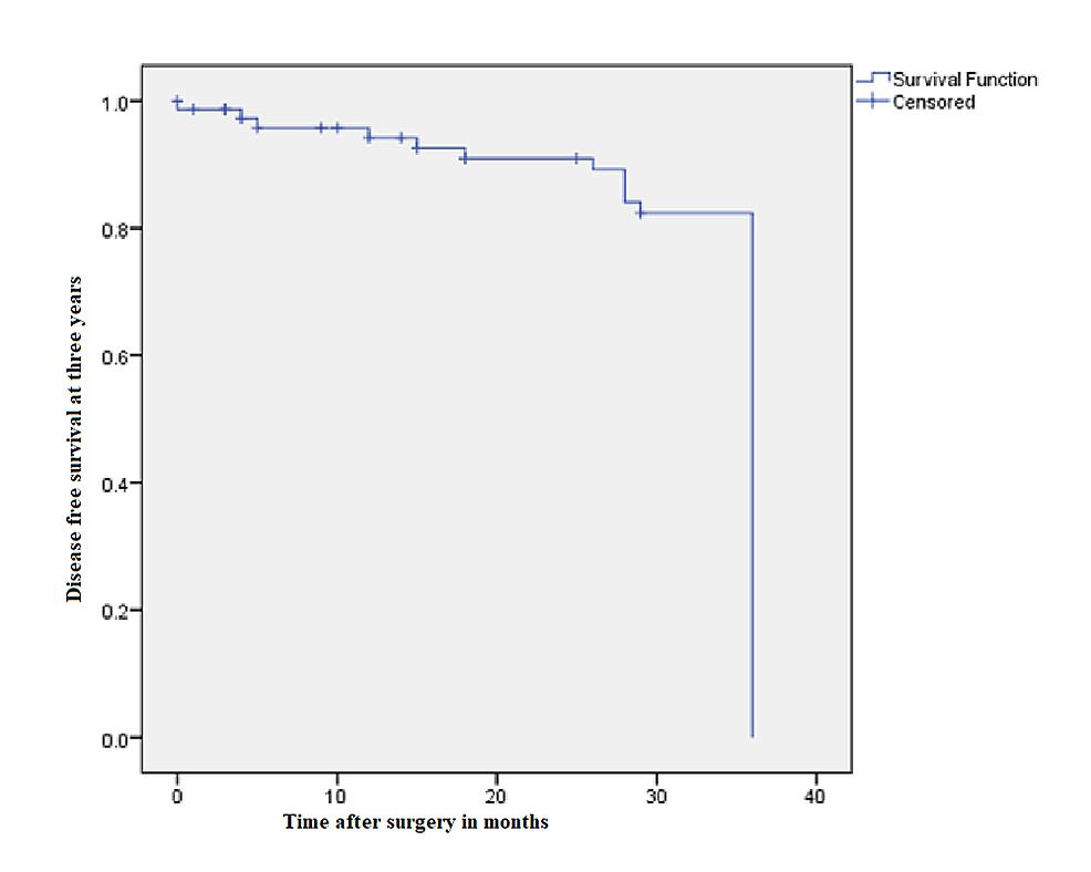 Kaplan-Meier-curve-showing-disease-free-survival-at-three-years