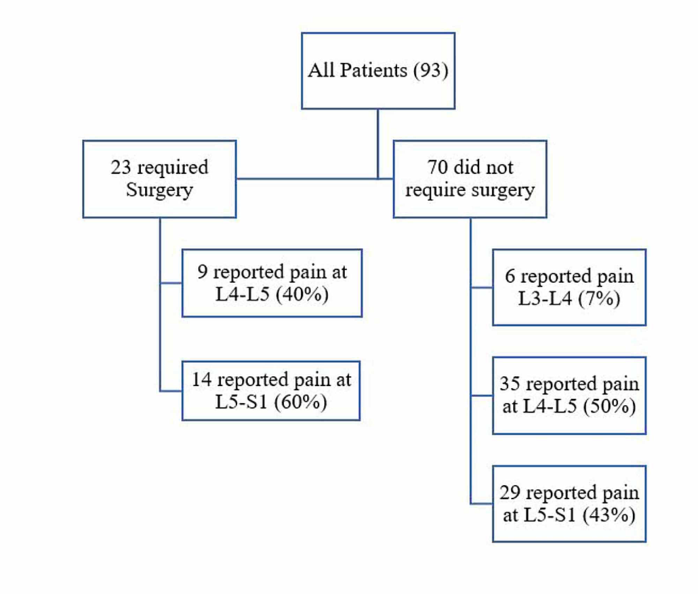 The-affected-vertebral-segments-in-both-surgical-and-nonsurgical-low-back-pain-patients.