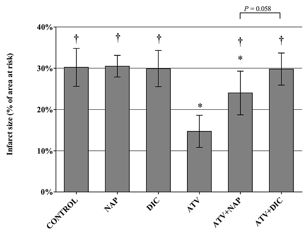 Infarct-size,-calculated-as-percentage-from-the-area-at-risk-after-30-minutes-of-ischemia-and-120-minutes-of-reperfusion