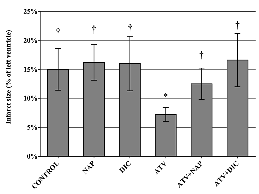 Infarct-size-calculated-as-percentage-from-the-volume-of-left-ventricle-after-30-minutes-of-ischemia-and-120-minutes-of-reperfusion