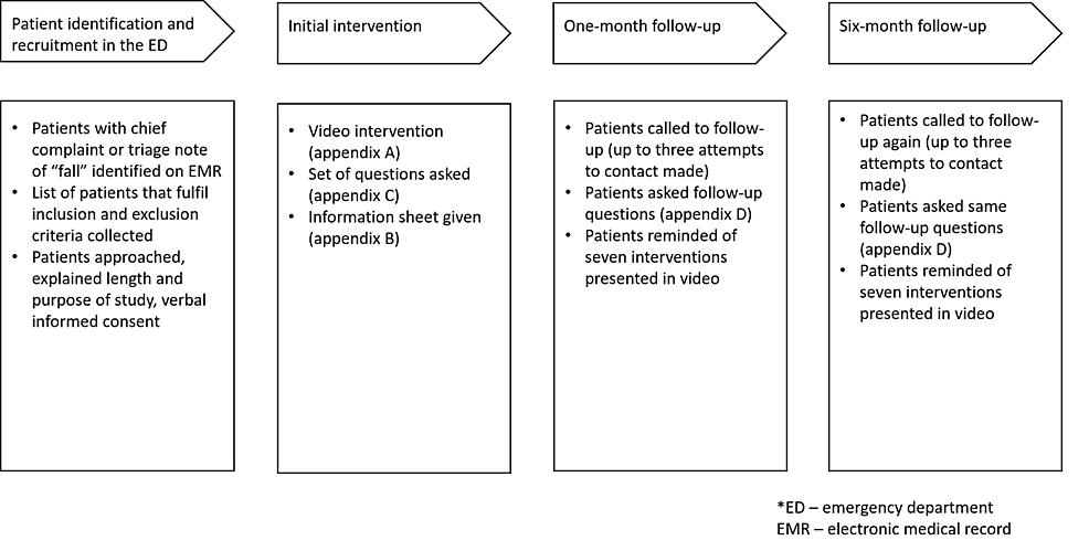 Flow-diagram-of-the-study-procedure