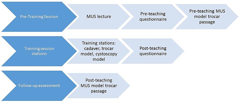 Study-flow-diagram