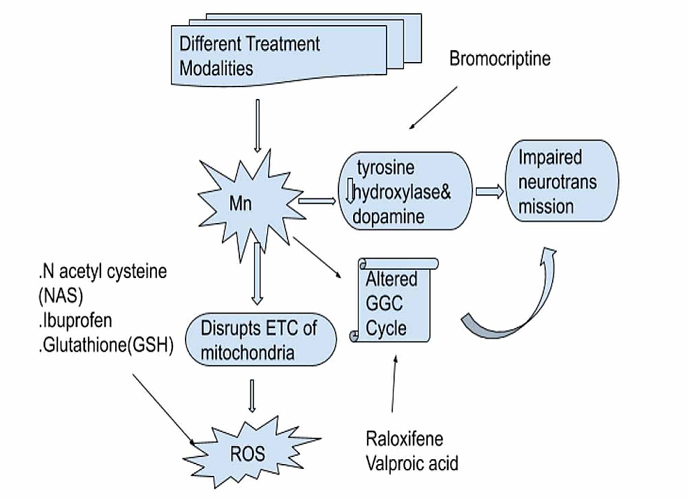 Treatment-options-for-acquired-hepatocerebral-degeneration.
