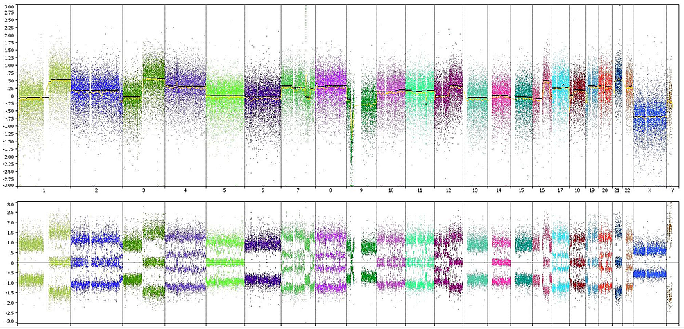 Whole-genome-copy-number-analysis