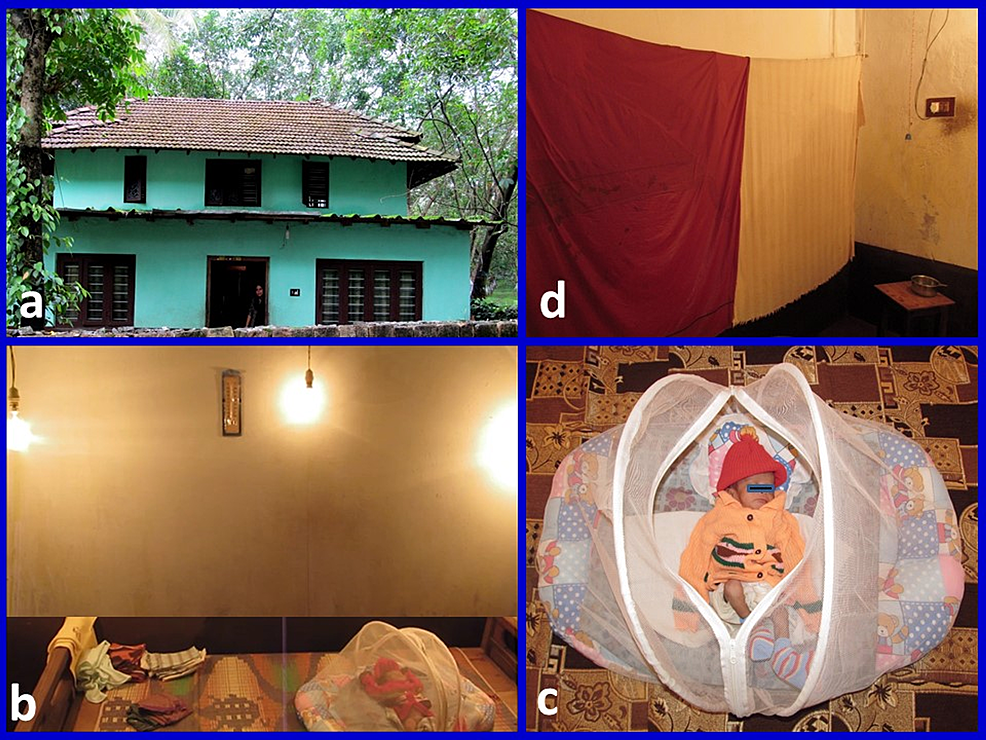 Original-image-of-an-incubator-at-home