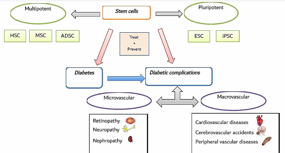 Overview-of-Stem-Cell-Therapy-in-Diabetes-and-Its-Related-Complications.