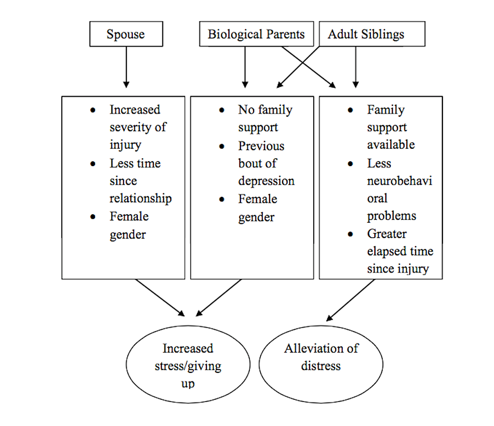 Impact-of-the-relationship/family-characteristics-on-caregiver-stress