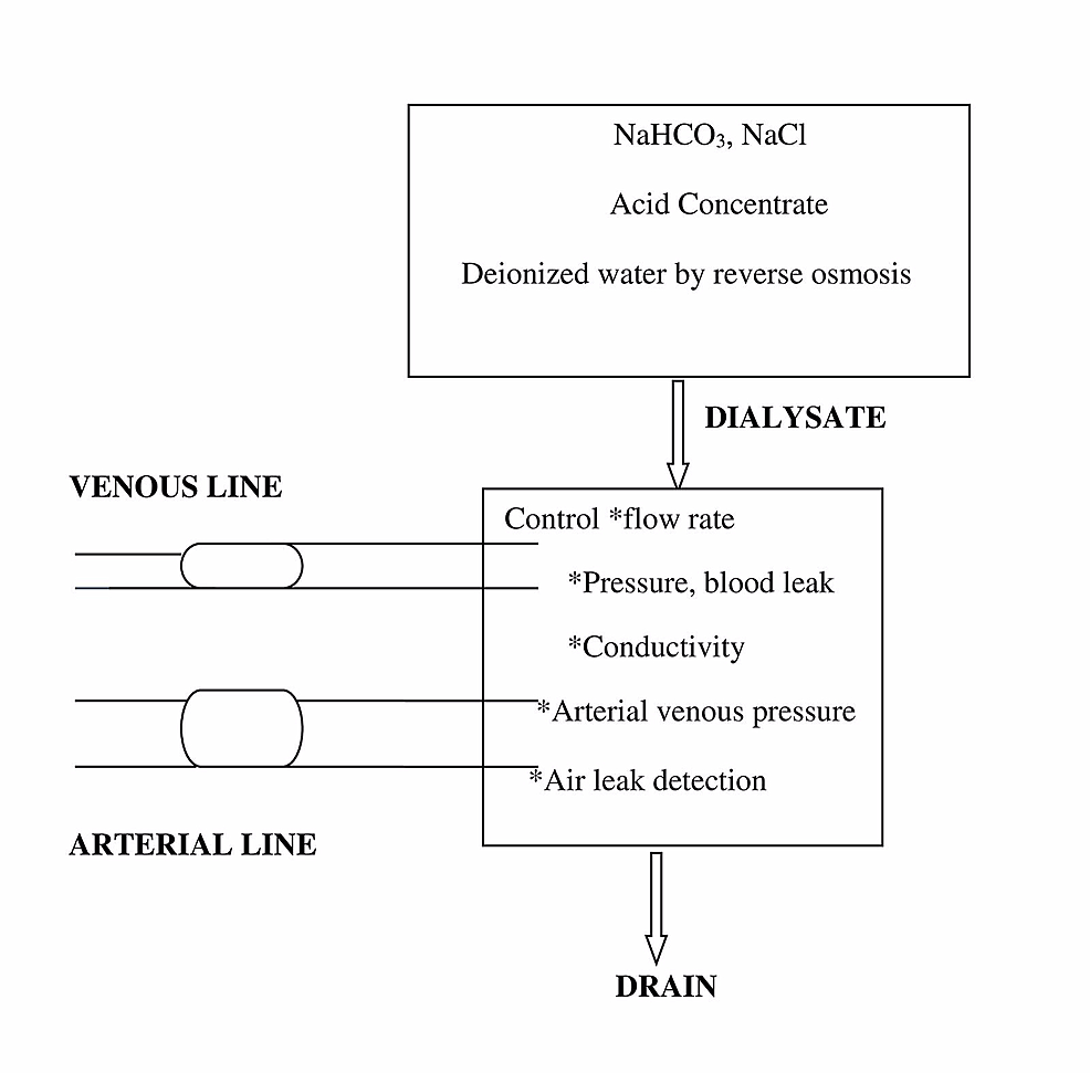 Diagrammatic-Representation-of-a-Dialyzer