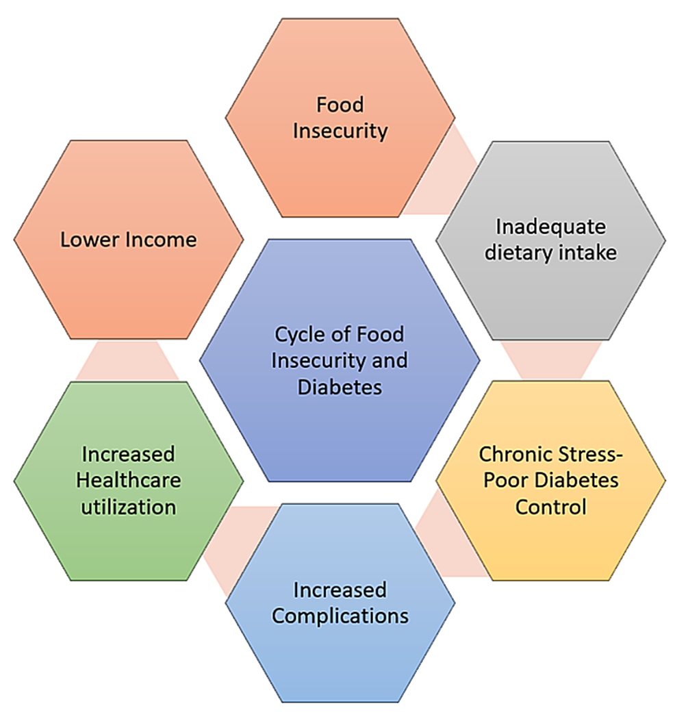 Cycle-of-food-insecurity-and-chronic-disease:-diabetes