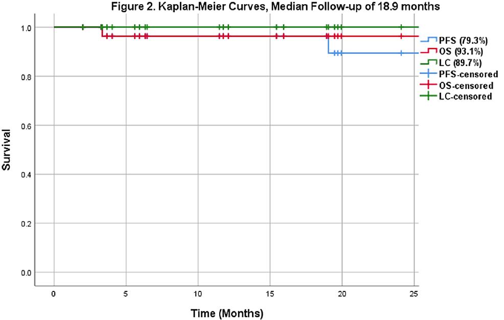Kaplan-Meier-curves-(median-follow-up-of-18.9-months)