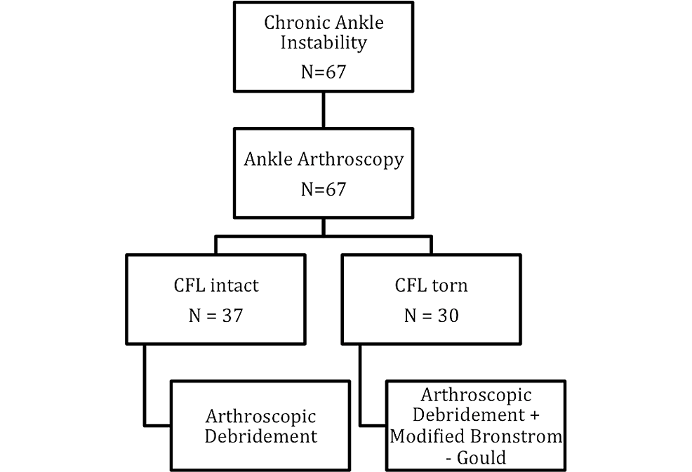 All-patients-underwent-ankle-arthroscopy,-of-whom-30-patients-were-diagnosed-with-CFL-tears.-They-were-addressed-further-with-the-modified-Broström–Gould-procedure.