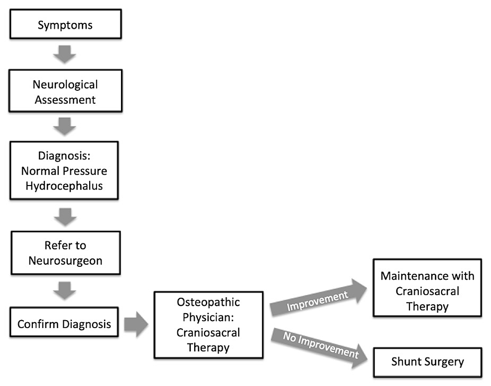 Proposed-normal-pressure-hydrocephalus-diagnosis-and-treatment-workflow