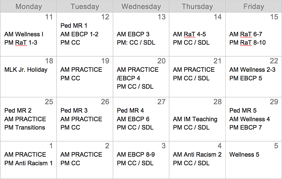 Bird's-eye-schedule-of-the-academic-elective.