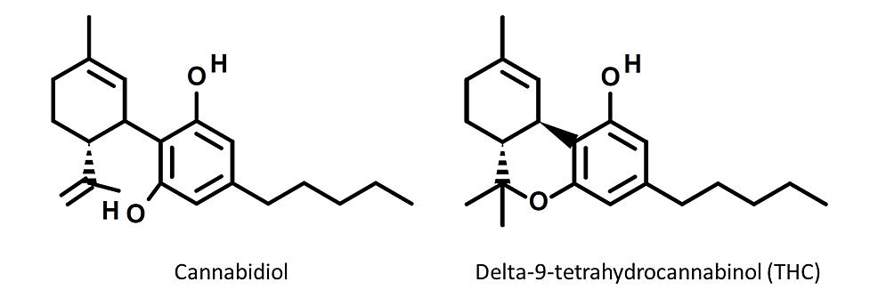 Structures-of-cannabidiol-and-delta-nine-tetrahydrocannabinol-(THC).