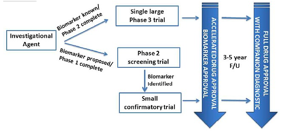 Neoadjuvant-pathways-for-accelerated-approval-for-high-risk-early-breast-cancer.
