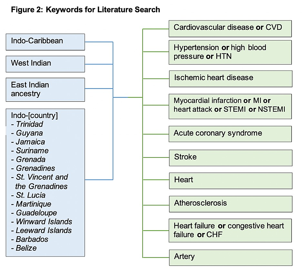 Keywords-included-in-literature-search-