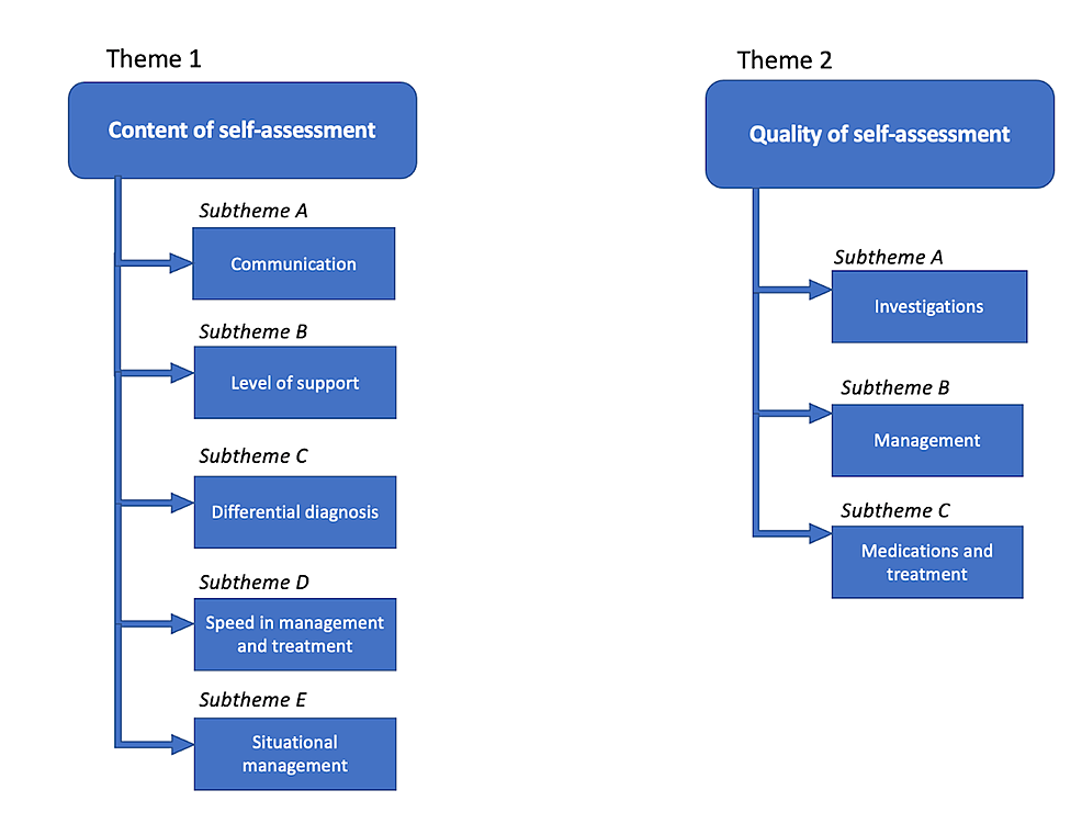 Overview-of-themes-and-subthemes-from-qualitative-data