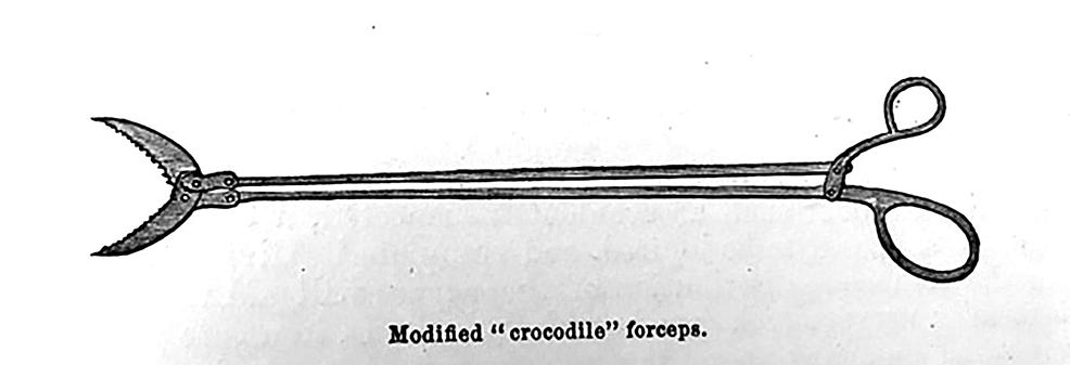 Crocodile-forceps-for-fragmented-arrowheads