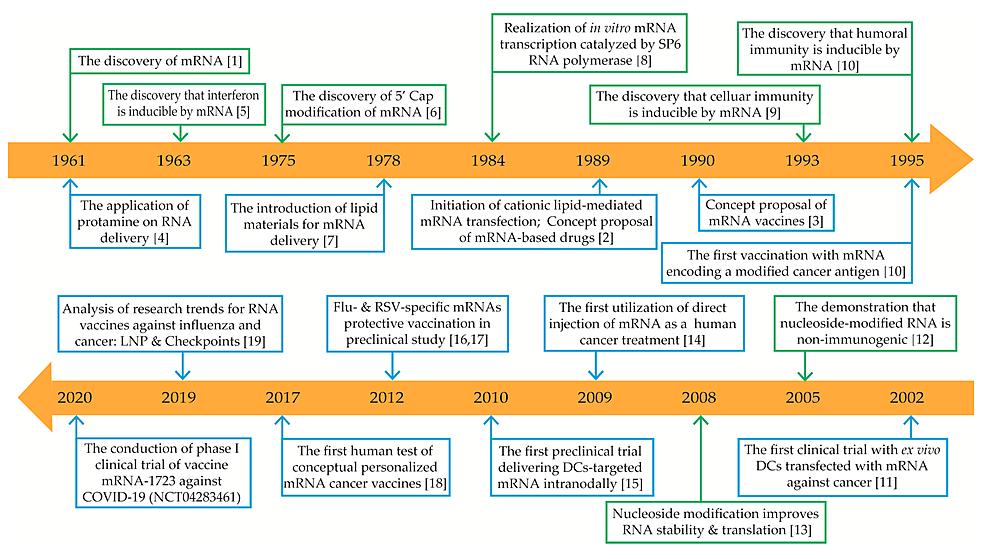 mRNA-based-drugs-major-breakthroughs-timeline.
