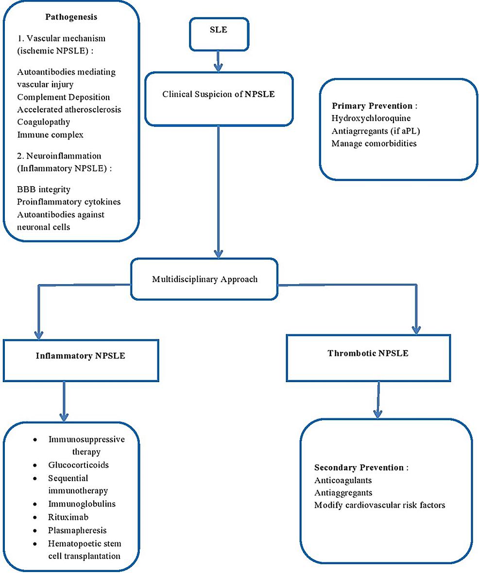 Treatment-options-in-neuropsychiatric-SLE