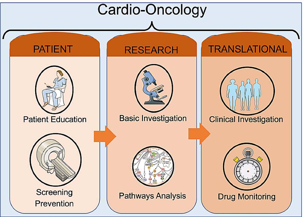 A-comprehensive-plan-for-the-cardio-oncologist-to-address-comorbidities-when-personalizing-treatment-for-a-cancer-patient.