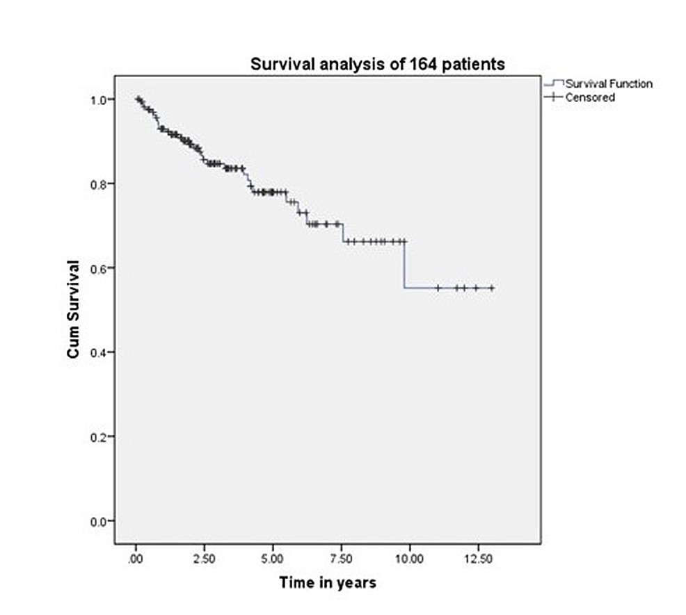 Survival-of-164-patients-treated-with-surgery-and-radiotherapy.