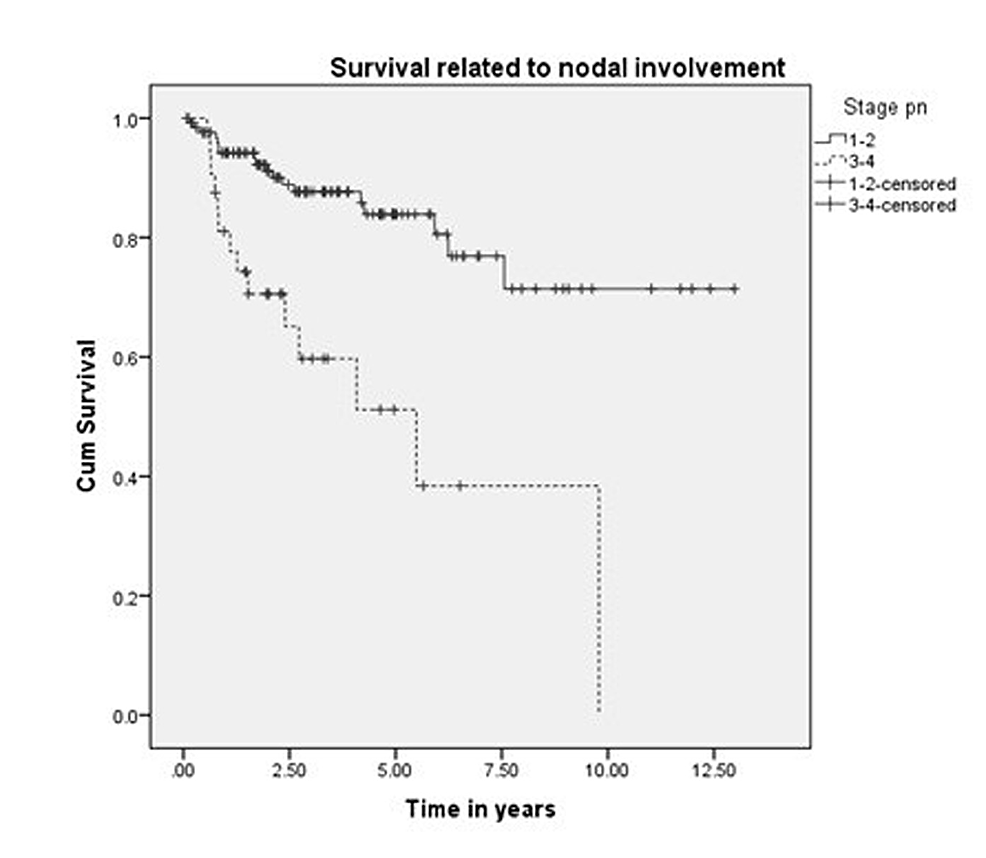 Survival-related-to-nodal-stage.