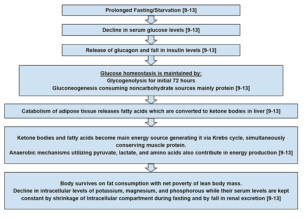 refeeding syndrome risk factors diagram  cureus | what a trainee surgeon should know about ...