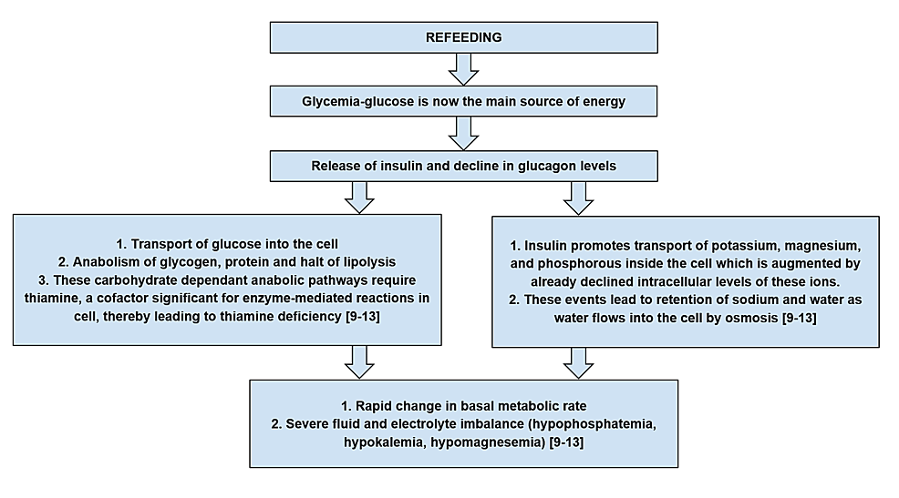 Metabolic-and-hormonal-changes-leading-to-refeeding-syndrome