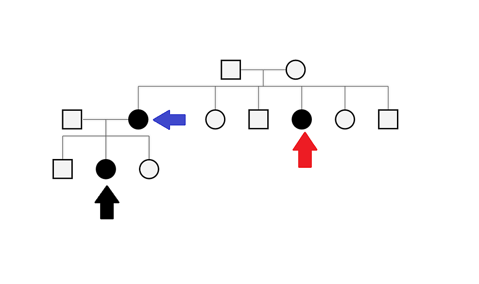 Pedigree-diagram-with-the-black-arrow-representing-the-patient,-the-blue-arrow-the-patient's-mother-and-the-red-arrow-the-patient's-maternal-aunt.-All-three-of-them-had-a-history-of-similar-symptoms.