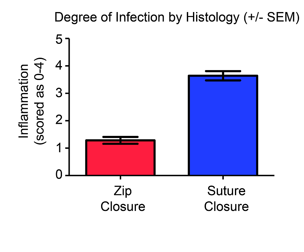 Degree-of-infection-by-histological-analysis-of-H&E-stained-slides.