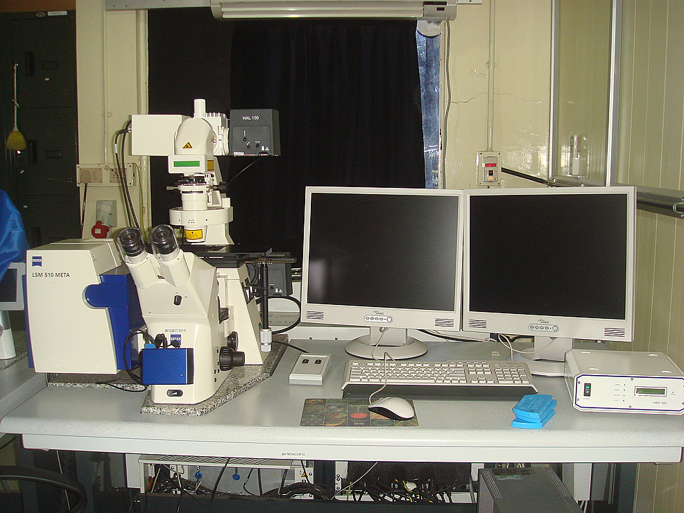 Confocal-laser-scanning-microscope