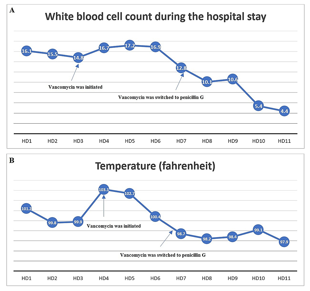 The-patient's-white-blood-cell-count-(A)-and-temperature-(B)-trends-during-the-hospital-course.-