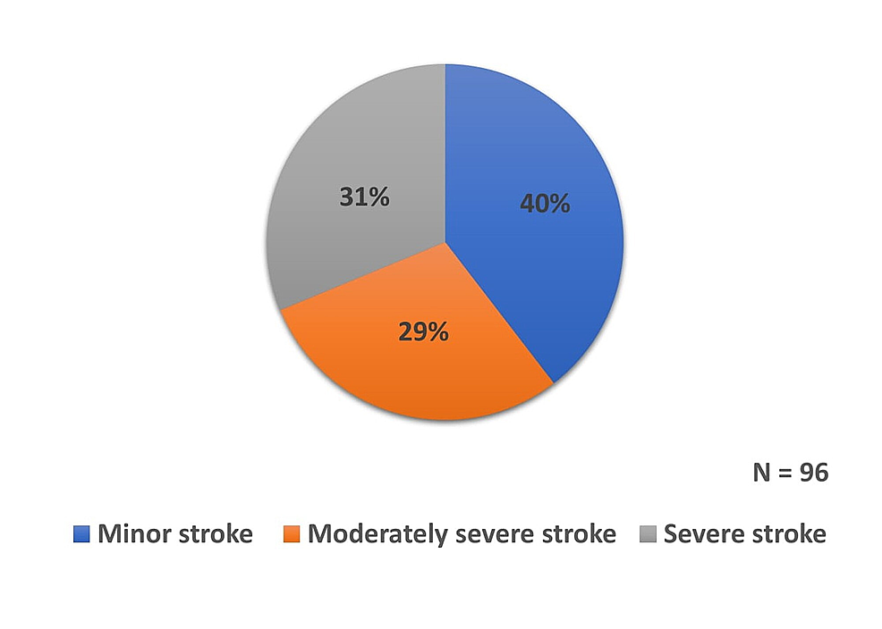 Distribution-of-patients-based-on-severity-of-stroke
