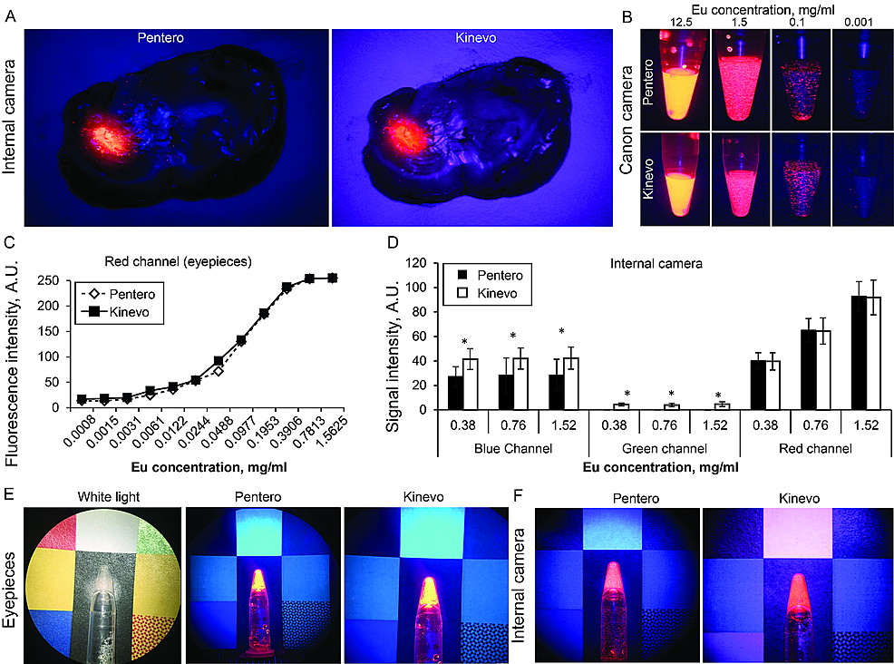 Laboratory-experiments-with-red-fluorescence-signal-visualization