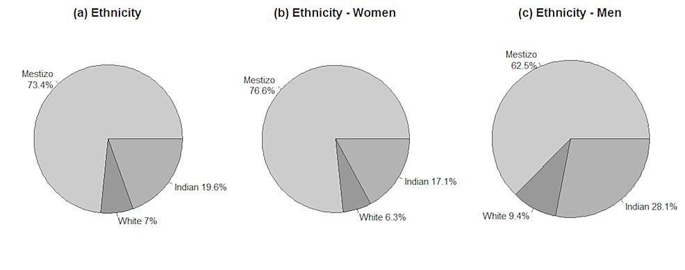 Participant-ethnicity.
