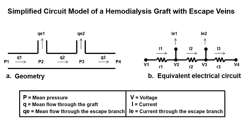 Simplified-circuit-model-of-a-hemodialysis-graft-with-escape-veins.