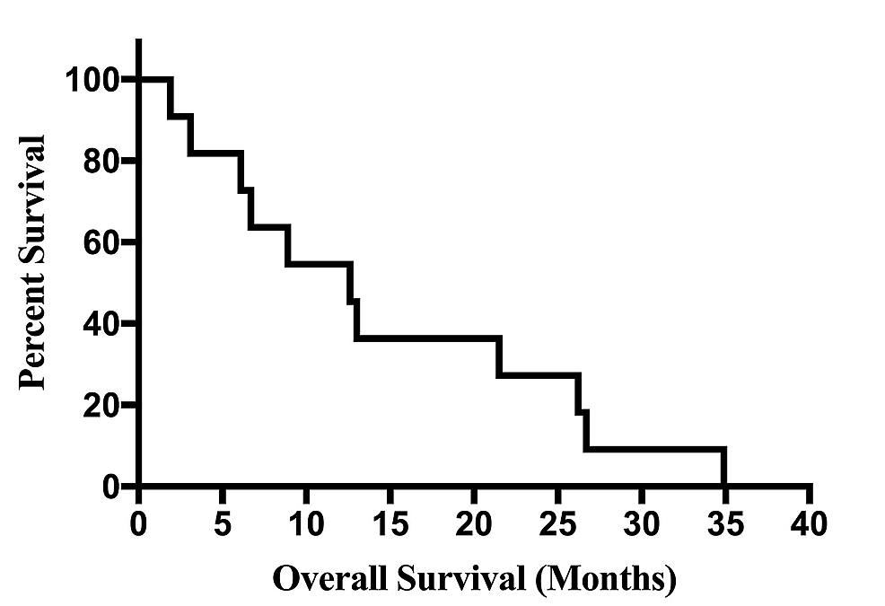 Overall-Kaplan-Meier-Survival-Curve