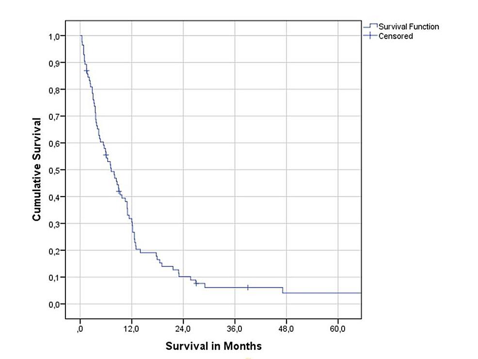 Overall-survival-(Kaplan-Meier-estimate).
