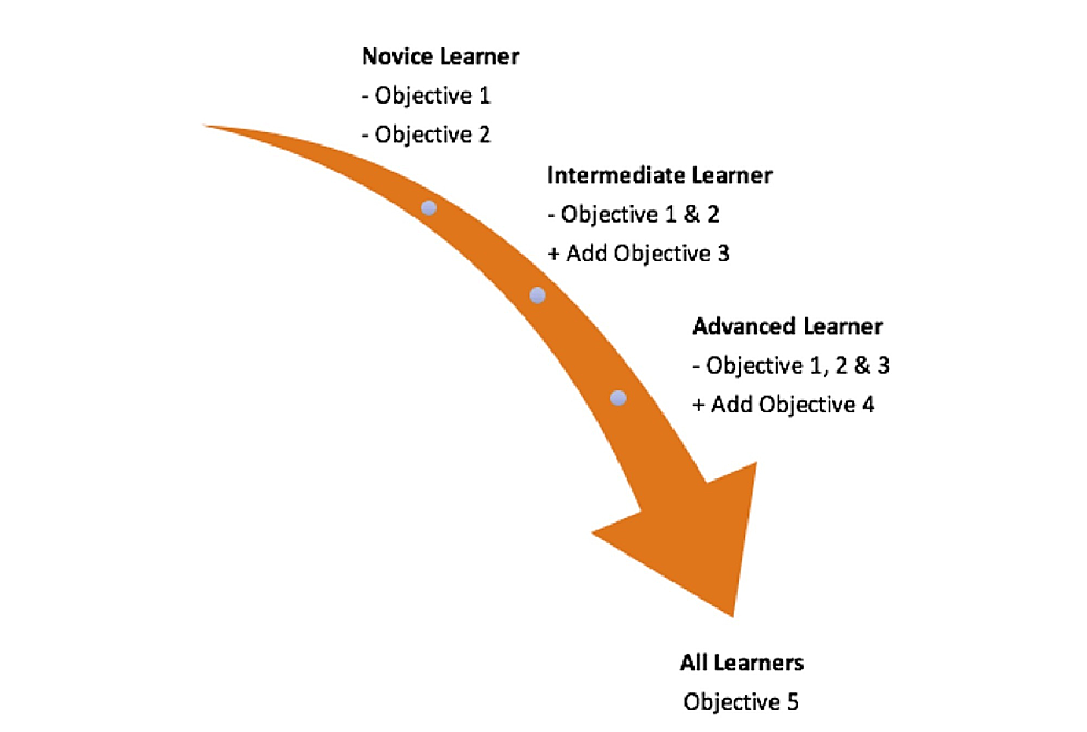Application-of-case-objectives-as-relevant-to-different-learners.-